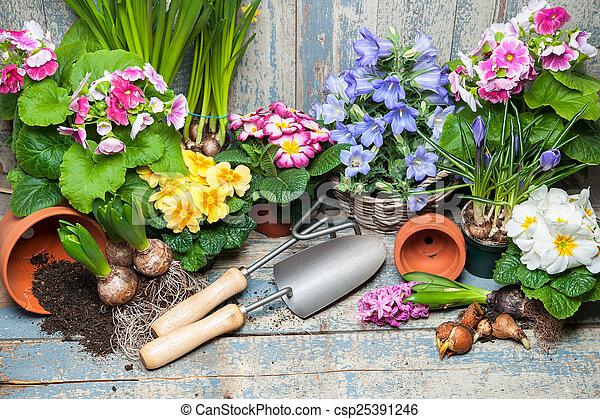 Gardening - csp25391246