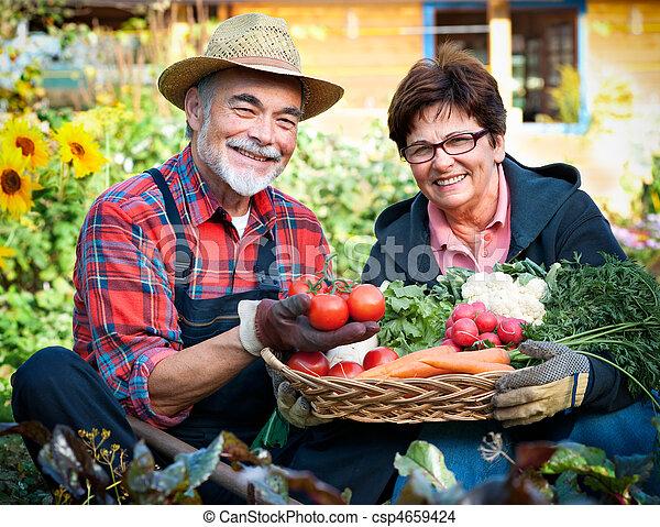 Gardening - csp4659424