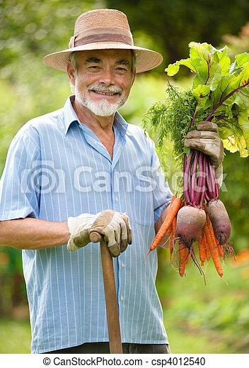 gardening - csp4012540