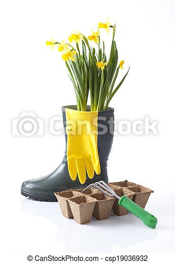 gardening  - csp19036932