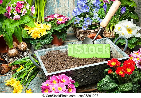 Gardening - csp25391237