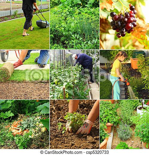 Gardening - csp5320733