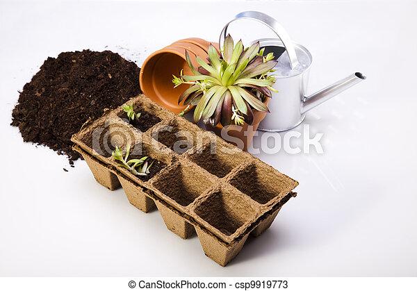 Gardening  - csp9919773