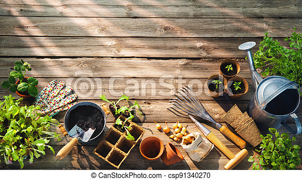 Gardening tools and seedlings on wooden table in greenhouse - csp91340270