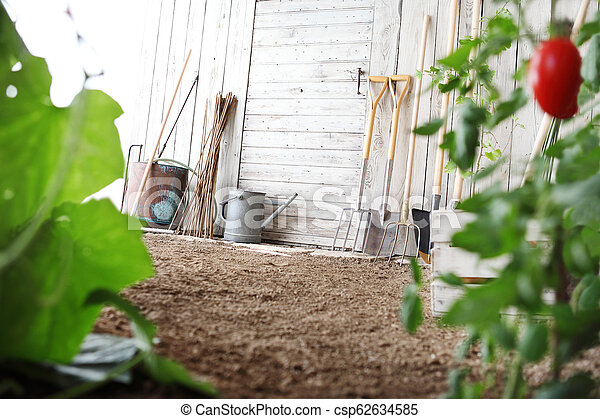 Gardening Tools On Wooden White Wall Equipment For Vegetable