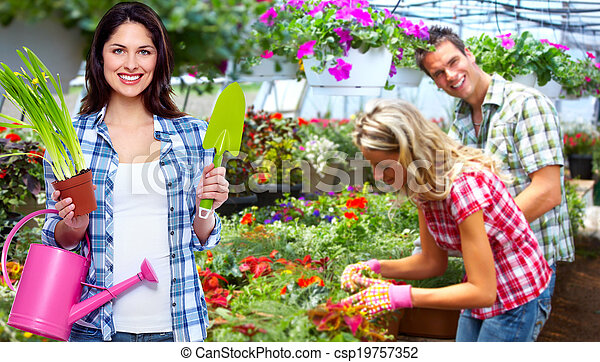 Gardening woman with plant. - csp19757352