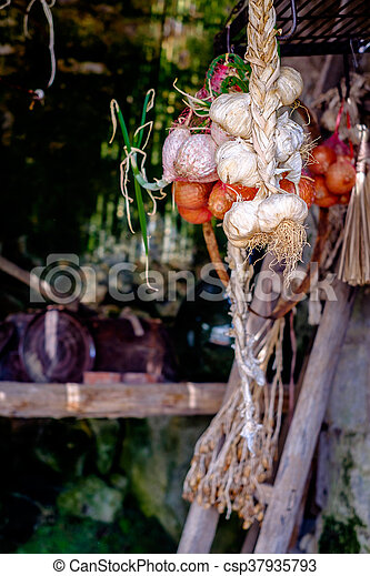 garlic and onions hung twisted in a cave - csp37935793