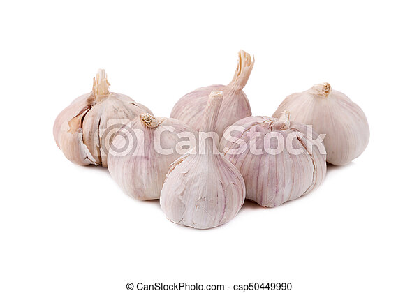 garlic isolated on white background. - csp50449990