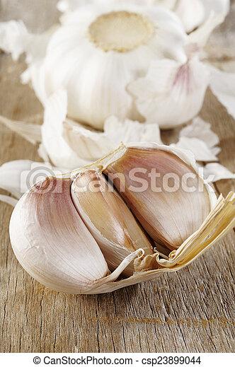 Garlic spice - csp23899044