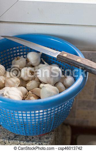 Garlic - csp46013742