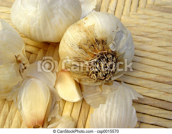 Garlic - csp0015570
