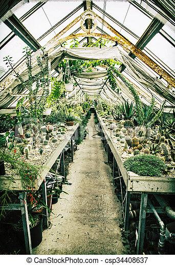 Gartenarbeit Thema Verschieden Gewachshaus Kakteen Altes