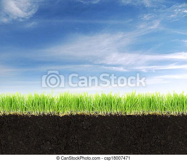 Querschnitt von Land mit Boden, Gras und blauem Himmel. - csp18007471