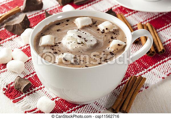 gastrónomo, chocolate caliente - csp11562716