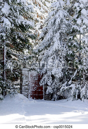 Gate in a snow wood - csp0015024