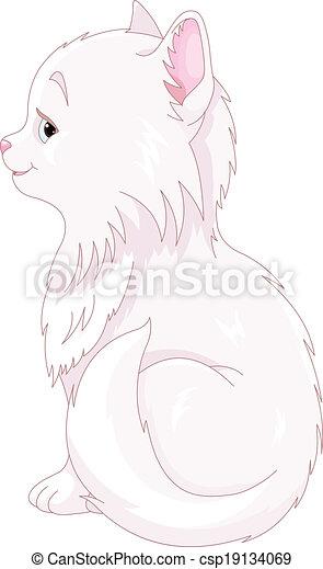 Gato blanco - csp19134069