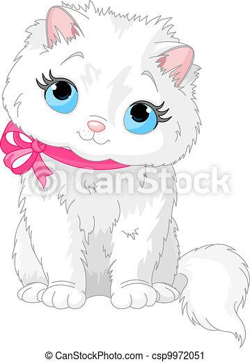 Lindo gato blanco - csp9972051