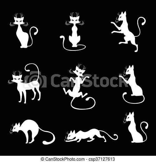 Gatos Blanco Conjunto Fondo Negro Conjunto Silueta Vector