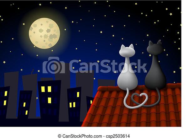 Dos gatos en un techo - csp2503614