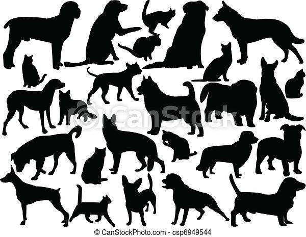 Gatos y perros - csp6949544