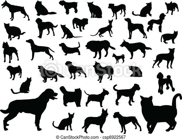 gatos, silueta, perros - csp6922567