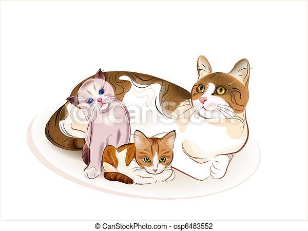 gatti, kittens., gatto, family. - csp6483552
