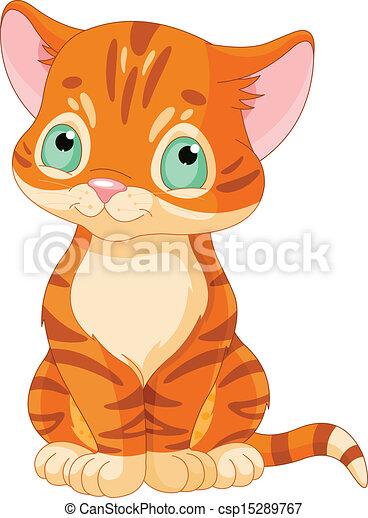 gattino, carino, tabby - csp15289767