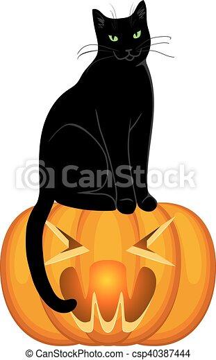 Zucca Halloween Gatto.Gatto Zucca