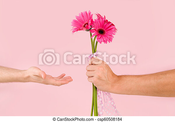 Gay couple with pink gerbera flower. - csp60508184
