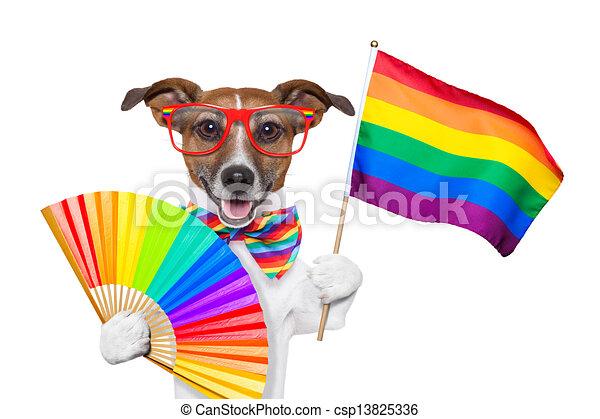 gay pride dog - csp13825336