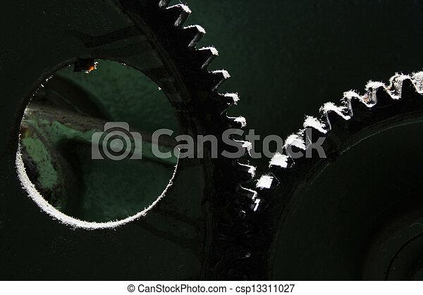 Gear Wheel - csp13311027