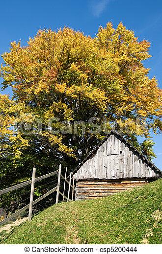 gebouw, carpathia, abrupt, herfst, hoogte, mooi, architectuur - csp5200444