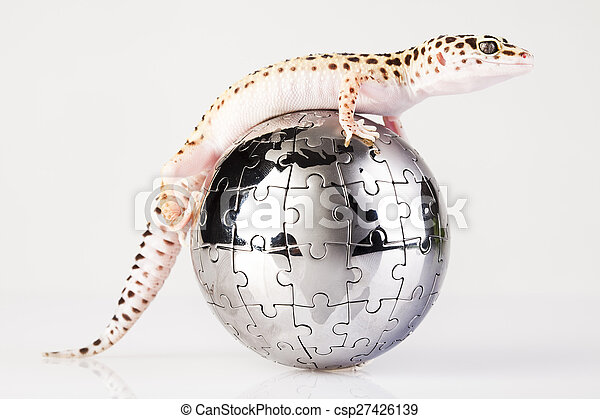 Gecko in globe, bright colorful vivid theme - csp27426139