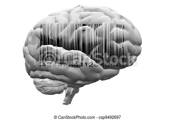 gehirn, barcode - csp9492697