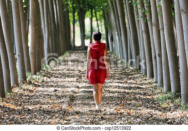 geklede, wandelende, bos, rood, vrouwen - csp12513922