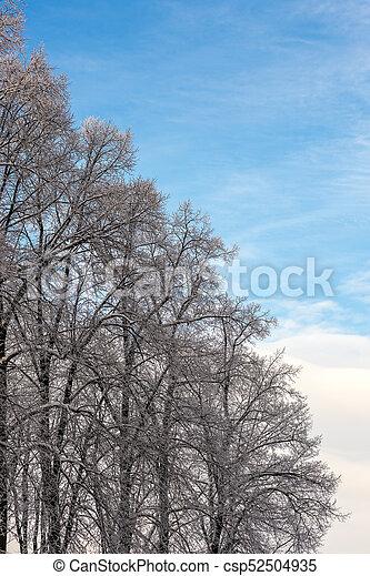 gelado, inverno, dia - csp52504935