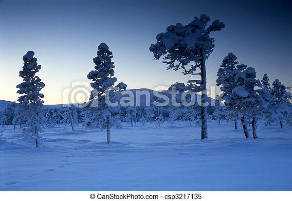 gelado, inverno, dia - csp3217135