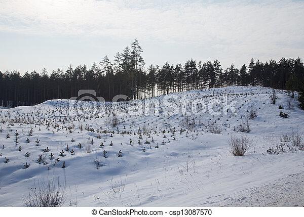 gelado, inverno, dia - csp13087570