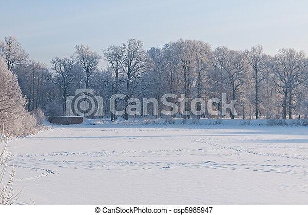 gelado, inverno, dia - csp5985947