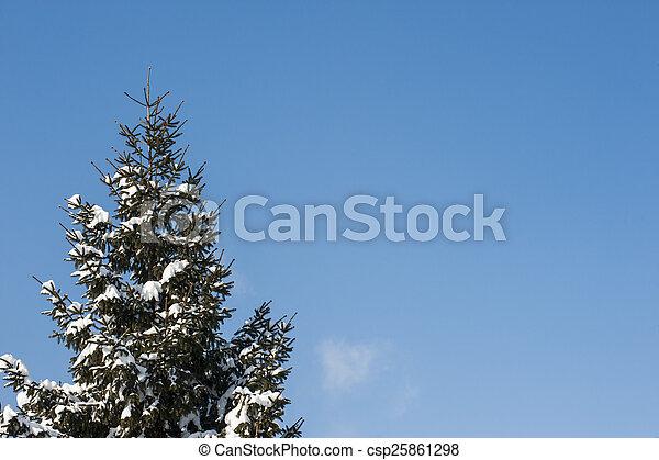 gelado, inverno - csp25861298