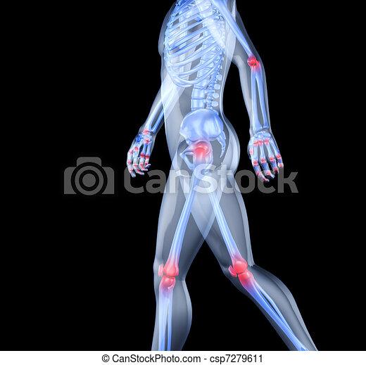 Gelenke, mann, skelett, wehen, mitten. Joints., skelett, bild ...