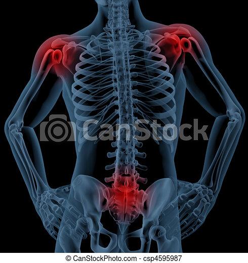 Gelenke, medizin, hervorheben, skelett. Hervorheben, skelett, render ...