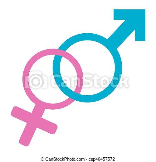 Gender Symbol Isolated Gender Symbols On A White Background Vector