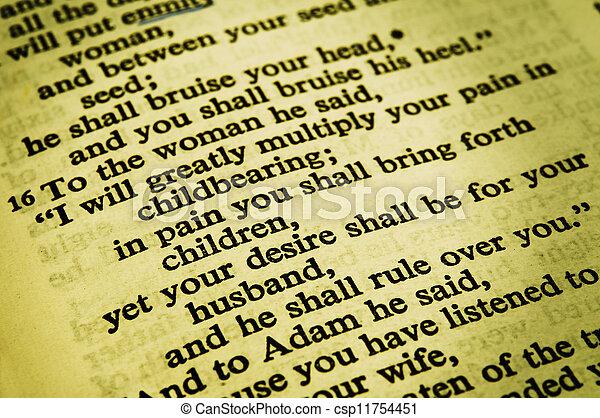 Genesis 3:16 - csp11754451
