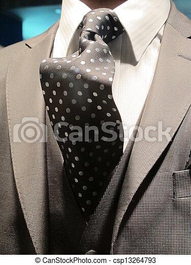 gentleman elegant suit and tie - csp13264793