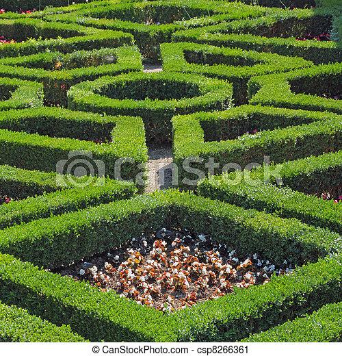 geometric pattern of green hedge flowerbed in boboli gardens in ...