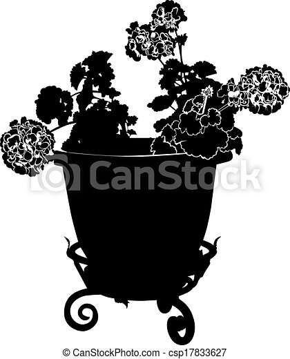 geranium flower in a pot - csp17833627