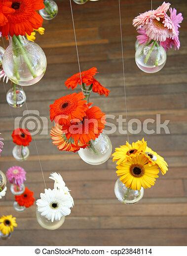 gerbera flower - csp23848114