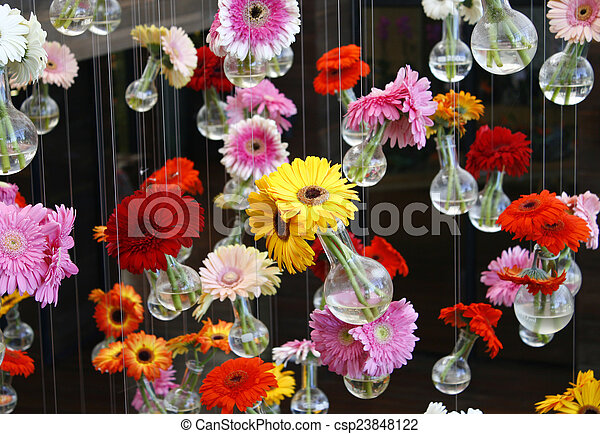 gerbera flower - csp23848122