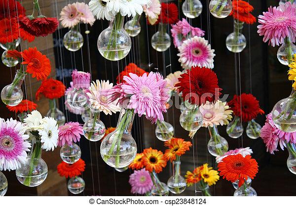 gerbera flower - csp23848124